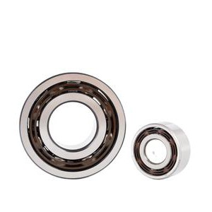 SKF 51106 Thrust Ball Bearing