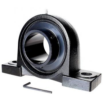 Wearable pillow Block Bearing (UCP 209)