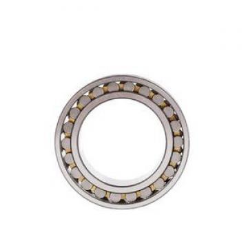 SKF/NSK/NTN/Koyo/NACHI Thrust Ball Bearing (51315 51116)
