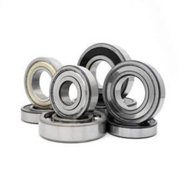 6004 SiN full ceramic bearing